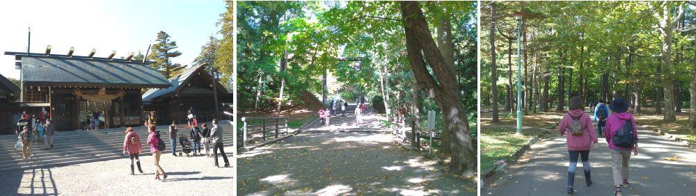 運気上昇ウォーキング札幌市中央区円山宮の森